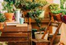5+1 gyönyörű balkonnövény a félárnyékos teraszokra